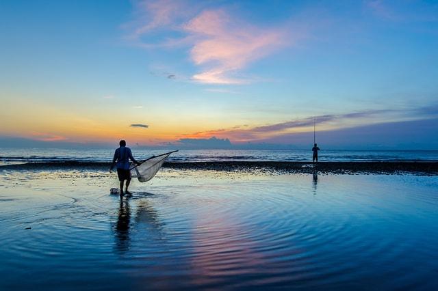 海边晨起风景图片